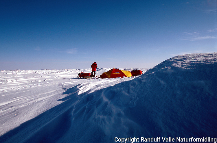 Teltleir i arktisk Canada. ---- Camp in Canadian arctic.