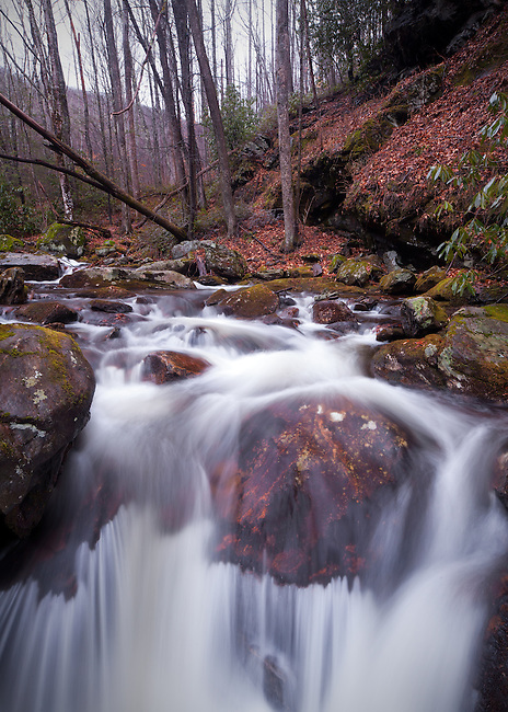 Cascades along Courthouse Creek, Pisgah National Forest