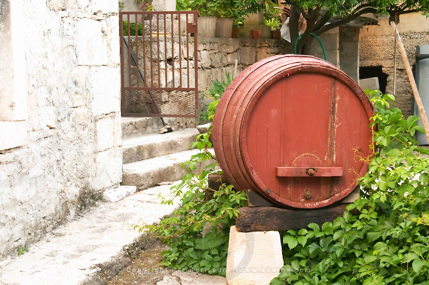 An old wooden barrel used for decoration in the garden. Toreta Vinarija Winery in Smokvica village on Korcula island. Vinarija Toreta Winery, Smokvica town. Peljesac peninsula. Dalmatian Coast, Croatia, Europe.