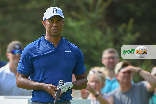 Tiger Woods (USA) watches his tee shot on 13 during 1st round of the World Golf Championships - Bridgestone Invitational, at the Firestone Country Club, Akron, Ohio. 8/2/2018.<br /> Picture: Golffile   Ken Murray<br /> <br /> <br /> All photo usage must carry mandatory copyright credit (© Golffile   Ken Murray)