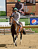 Ain't Got Time winning at Delaware Park on 7/24/14