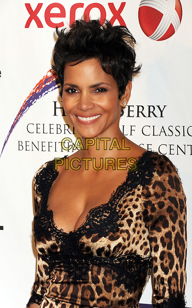 Halle Berry.The 2012 Jenesse Silver Rose Awards Gala and Auction at Beverly Hills Hotel in Beverly Hills, California, USA..April 14, 2012.half length black brown leopard print lace cleavage .CAP/ROT/TM.©Tony Michaels/Roth Stock/Capital Pictures