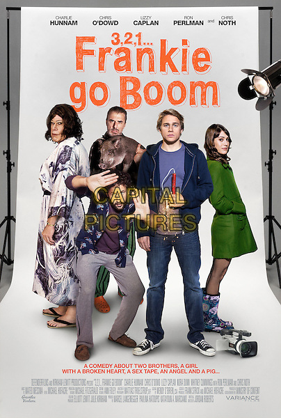 POSTER ART.in 3, 2, 1... Frankie Go Boom (2012) *Filmstill - Editorial Use Only*.CAP/FB.Supplied by Capital Pictures.