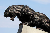 09/16/07 :  Outside Bank of America stadium, a giant Panthers' statue roars for fans. ..The Carolina Panthers, professional American NFL football team that represents both North Carolina and South Carolina, is based in Charlotte, North Carolina. The Panthers began playing in 1995 as part of the National Football League?s expansion program. They are members of the National Football Conference (NFC) South Division. They play in the Bank of America Stadium, located in downtown Charlotte.