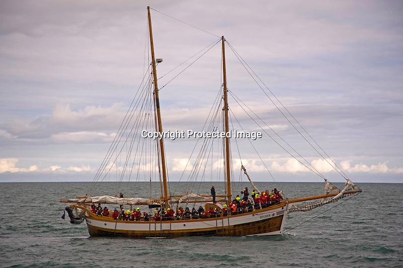 Hildur Sailing Vessel on Whale Watch in Skjalfandi Bay near Husavik in North Iceland