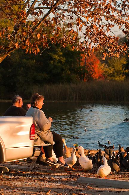 Senior couple feeding the birds at Hart Memorial Park, Bakersfield, California.