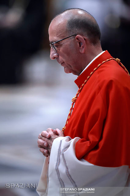Cardinal Juan José Omella of Spain.Pope Francis leads a consistory for the creation of five new cardinals  at St Peter's basilica in Vatican.  from countries  : El Salvador, Laos, Mali,Sweden and Spain.<br /> Cardinal Gregorio Rosa Chavez from Salvador;Cardinal Louis-Marie Ling Mangkhanekhoun from Laos;Cardinal Anders Arborelius from Sweden;Cardinal Jean Zerbo from Mali;Cardinal Juan José Omella of Spainon June 28, 2017