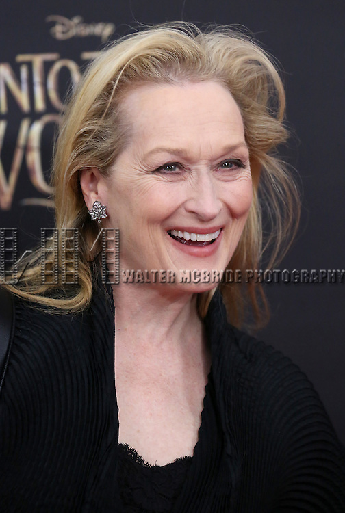 Meryl Streep attends the 'Into The Woods' World Premiere at Ziegfeld Theater on December 8, 2014 in New York City.