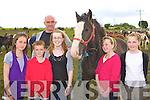 Sadbh O'Sullivan, Adam Irwin, Kelly, Chloe Redmond, Michael Barry Killorglin admiring Jimmy O'Hanlon Listowel stallion at the Puck horse Fair in Killorglin on Monday