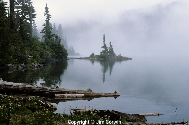 Sunrise Mowich lake in fog Cascade Mountain Range Mount Rainier National Park Washington State USA