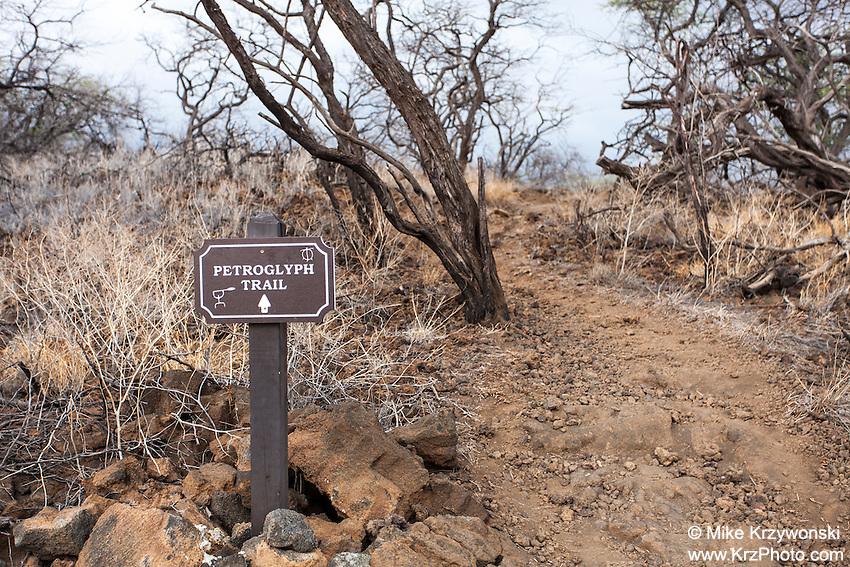 """Petroglyph Trail"" sign at Puako Petroglyph Park, Big Island, Hawaii"
