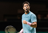 Rotterdam, The Netherlands, 14 Februari 2019, ABNAMRO World Tennis Tournament, Ahoy, Fernando Verdasco (ESP),<br /> Photo: www.tennisimages.com/Henk Koster