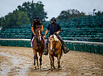 September 2, 2020:  Gamine exercises as horses prepare for the 2020 Kentucky Derby and Kentucky Oaks at Churchill Downs in Louisville, Kentucky. The race is being run without fans due to the coronavirus pandemic that has gripped the world and nation for much of the year. Evers/Eclipse Sportswire/CSM