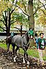 In X Hess before The Delaware Park Arabian Juvenile Championship at Delaware Park on 10/27/12...