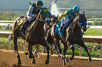 DEL MAR, CA. SEPTEMBER 4: #6 Bolt d'Oro  ridden by Corey Nakatani, battles Zatter ridden by Rafael Bejarano, in the stretch of the  Del Mar Futurity (Grade l) on September 4, 2017, at Del Mar Thoroughbred Club in Del Mar, CA.(Photo by Casey Phillips/Eclipse Sportswire/Getty Images)