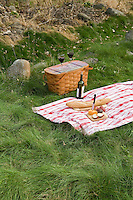 Picnic on garden natural grass lawn of No Mow fescue meadow Neil Diboll Garden Wisconsin, Prairie Nursery