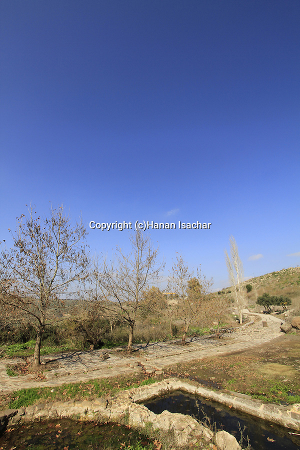 Ein Umm el Kanatir in the Golan Heights