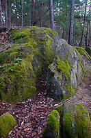 Glacial Erratic Boulders, Stuart Island, Washington, US