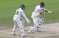 Daniel Lawrence of Essex in batting action during Nottinghamshire CCC vs Essex CCC, Specsavers County Championship Division 1 Cricket at Trent Bridge on 1st July 2019