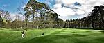 HILVERSUM - , Hilversumsche Golf Club. COPYRIGHT KOEN SUYK