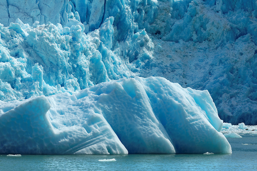 Icebergs floating below terminus face of South Sawyer Glacier, Tracy Arm, Southeast Alaska, USA