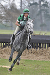 A selection of Equestrian Photos