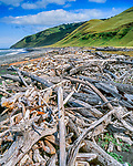 Driftwood, Spanish Flat, King Range National Conservation Area, The Lost Coast, Humboldt County, California