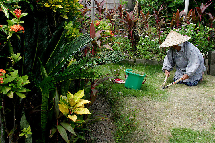 """90-year-old Haruko Maeda, sprawls comfortably in the front yard of her home in Ogimi Village, cutting the grass with a pair of hand shears. """"I'm getting this done before it gets too hot,"""" she explains. (Supporting image from the project Hungry Planet: What the World Eats.)"""