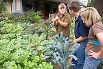 """Andrew and Patricia Nimelman cosult with Donna Smith (otherwise known as """"Your Backyard Farmer) at their home in NE Portland, OR.  Here they are checking for evidence of flea beatles on the kale in the front garden."""
