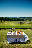 USA, Tennessee, Nashville, Iroquois Steeplechase, buffet table adorned with food