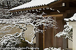 Fresh snow at entry gate to Portland Japanese Garden.