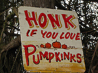 "Perhaps to get attention, or maybe just a little joke, a sign urges you to honk if you love ""pumpkinks""."