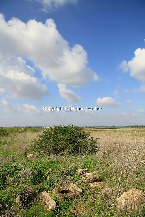 Israel, Shephelah, ancient olive press in Tel Miqne, site of biblical Ekron