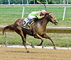 Lucky Lady Lawyer winning at Delaware Park on 7/23/12