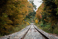Changing leaves surround a railroad track in Amherst, Massachusetts, USA.