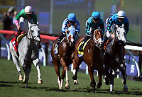 DEL MAR, CA - NOVEMBER 04: Stormy Liberal #4, ridden by Joel Rosario pulls ahead of the pack during the Breeders' Cup Turf Sprint race on Day 2 of the 2017 Breeders' Cup World Championships at Del Mar Racing Club on November 4, 2017 in Del Mar, California. (Photo by John Durr/Eclipse Sportswire/Breeders Cup)