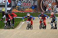 ASSEN - Wielersport, NK BMX, Stadsbroek,  02-07-2017,  Elite heren  Mitchel Schotman, Twan van Gendt,Jay Schippers en Tom Mandemakers