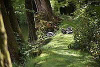 Mallard ducks on the bank of the mill pond, Chipping, Lancashire.