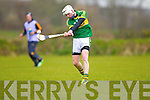 Shane Nolan Kerry in action against  Kildare in the National Hurling League at Abbeydorney on Sunday.