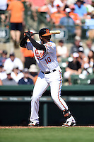 Baltimore Orioles outfielder Adam Jones (10) during a Spring Training game against the Detroit Tigers on March 4, 2015 at Ed Smith Stadium in Sarasota, Florida.  Detroit defeated Baltimore 5-4.  (Mike Janes/Four Seam Images)