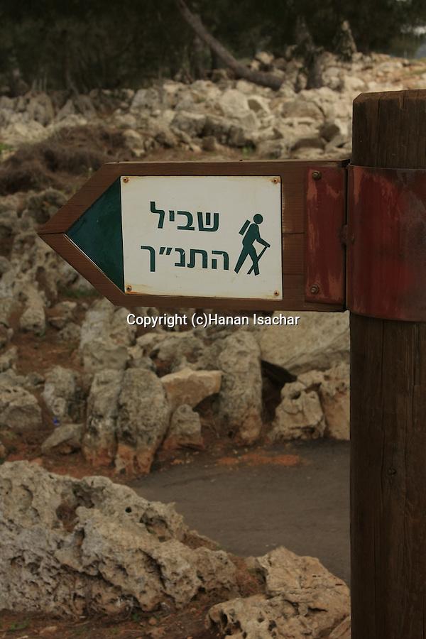 """Israel, the """"Bible trail"""" on Mount Gilboa"""