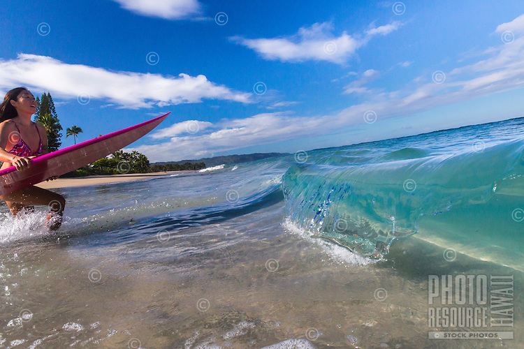 A local surfer girl runs into the ocean for a surf session at Laniakea Beach, O'ahu.