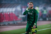 7th December 2017, Rajko Mitic Stadium, Belgrade, Serbia, UEFA Europa League football, Red Star Belgrade versus FC Cologne; Goalkeeper Timo Horn of FC Koeln looks dejected after the match