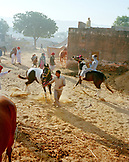 INDIA, Rajasthan, horses for sale at the Pushkar Camel market and horse sale