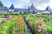 France, Loir-et-Cher (41), Cheverny, château de Cheverny, le jardin bouquetier, poireaux en fleurs, hémérocalles, lavatères...