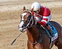 08-13-17 Saratoga Special Stakes (II) (Saratoga)