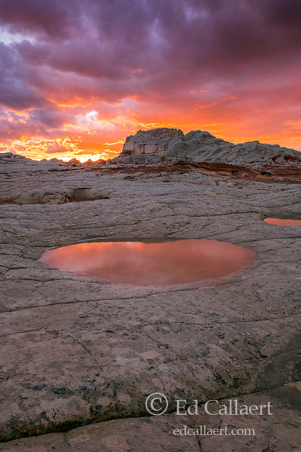 Sunset, Reflections, Sandstone Formations, White Pocket, Vermillion Cliffs National Monument, Paria Plateau, Arizona