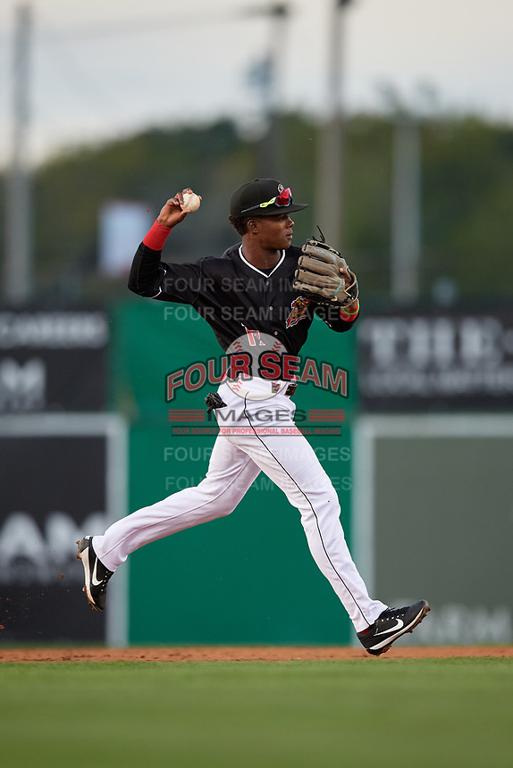 Batavia Muckdogs shortstop Dalvy Rosario (17) throws to first base during a NY-Penn League game against the Auburn Doubledays on August 31, 2019 at Dwyer Stadium in Batavia, New York.  Auburn defeated Batavia 12-5.  (Mike Janes/Four Seam Images)