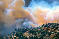 870000367 a los angeles county fire fighting helicopter performs an aerial retardant drop on a burning hillside in the path of the topanga fire in the hills above the san fernando valley in southern california