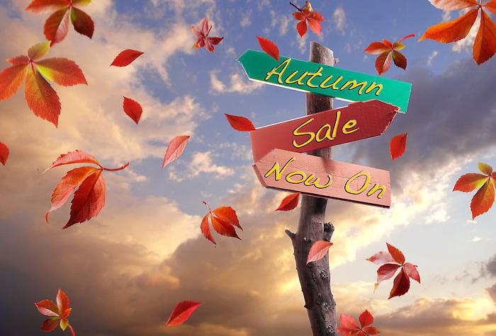 Autumn Sale now on
